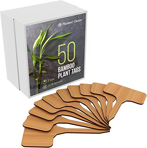 50 Bamboo Plant Labels in Gift Box (T-Type) -...