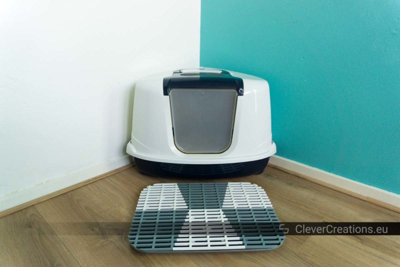 A DIY cat litter mat placed in front of a cat litter box in the corner of a room with white and green walls.