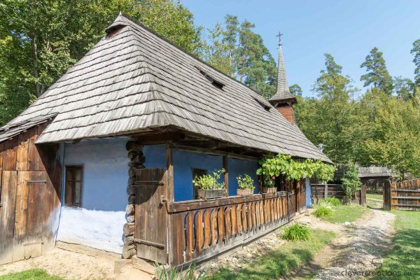 An old Romanian house with grapevines.